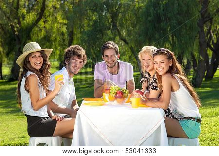 Group Of Young People On A Picnic