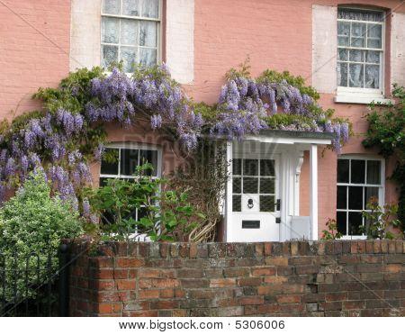 Wisteria House