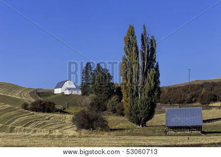 Barn On Hill In The Palouse.