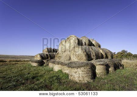 Bundles Of Hay.