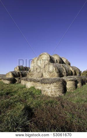 Large Bundles Of Hay.