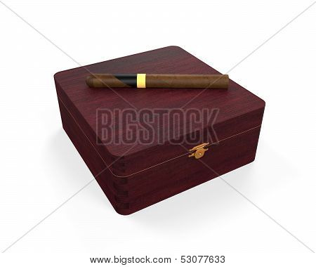 Cigar and Luxury Box