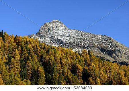 Mount Testa Grigia (ayas Valley, North Italy)