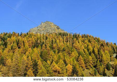 Mount Sarezza (ayas Valley, North Italy)