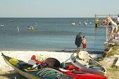 Cedar Key Kayaks