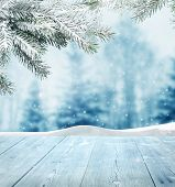 stock photo of snow forest  - winter background - JPG