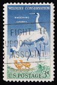 Wildlife 1957