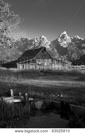 Iconic Mormon barn in the Teton National park, Wyoming