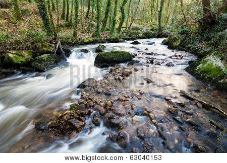 The River Par