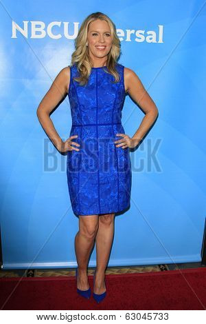 PASADENA - APR 8: Jessica St Clair at the NBC/Universal's 2014 Summer Press Day held at the Langham Hotel on April 8, 2014 in Pasadena, California