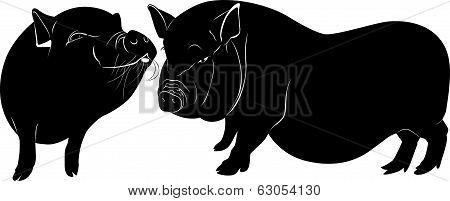 pig farm animal nature pet