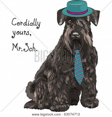 Vector Funny Cartoon Hipster Dog Schnauzer