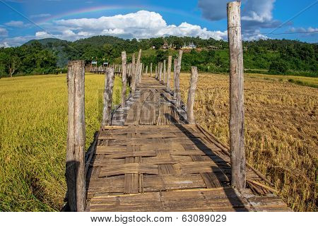 The bamboo bridge (zutongpae bridge)