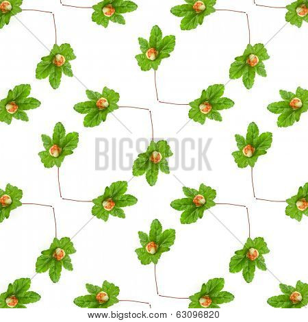 Abstract Decor background  of fresh cloudberry ( Rubus chamaemorus) isolated on white background