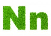 Grass letter N - ecology eco friendly concept character type