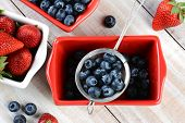 High angle shot of fresh picked berries in red and white bowls and a strainer. Strawberries and Blue
