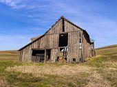 picture of wooden shack  - An old run down barn in a field near Potlach Idaho - JPG
