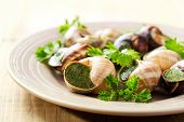 stock photo of escargot  - plate of escargots on a wooden table - JPG