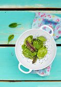 foto of sorrel  - fresh and organic green sorrel leaves on wooden table - JPG