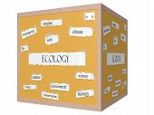 Ecology 3D Corkboard Word Concept