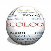 Ecology 3D Sphere Word Cloud Concept