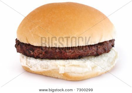 Grilled Hamburger On A Bun