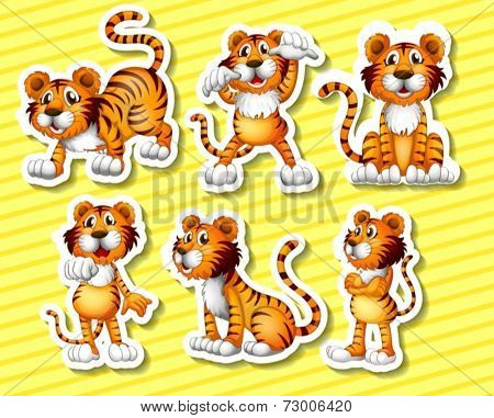 Illustration of a tiger with different poses