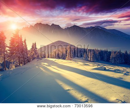 Fantastic evening landscape in a colorful sunlight. Dramatic wintry scene. National Park Carpathian, Ukraine, Europe. Beauty world. Retro style filter. Instagram toning effect. Happy New Year!