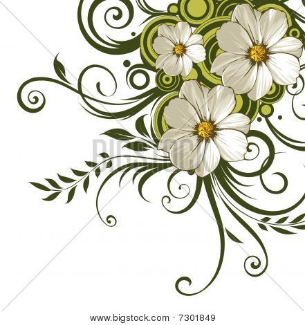 White Daisy Flower And Green Vines