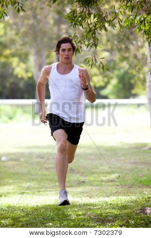 Young Man Jogging In Park.