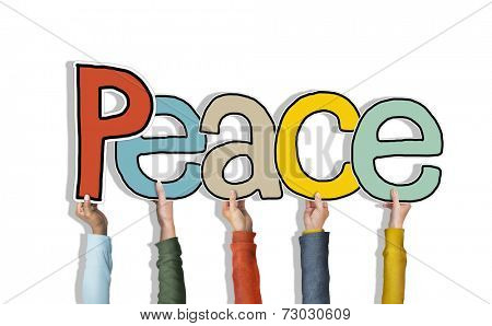 Group of Diverse People's Hands Holding Peace