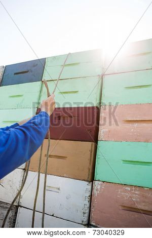 Cropped image of beekeeper tying rope on stacked honeycomb crates