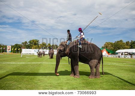 HUA HIN, THAILAND - AUGUST 28: Unidentified polo players at  elephant polo games during the 2013 King 's Cup Elephant Polo match on August 28, 2013 at Suriyothai Camp in Hua Hin, Thailand.