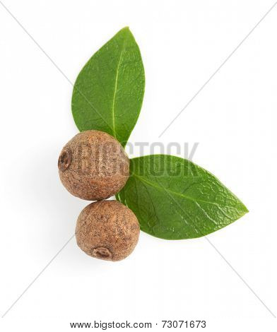 whole allspices isolated on white background