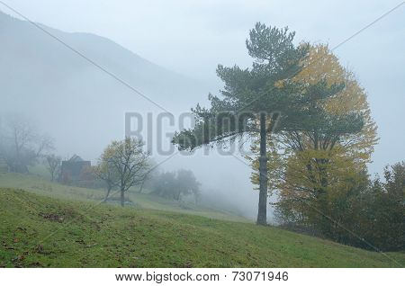 Autumn landscape with fog in a mountain village. Wooden fence in a rural yard. Carpathian mountains, Ukraine, Europe