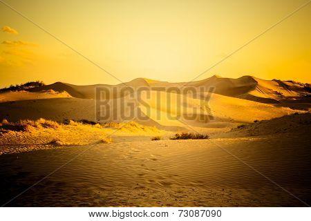 desert in sunset, tengger desert, china.