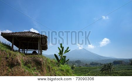 Hut in farms overlooking the terrace rice fields and ancient volcano, Bali Island