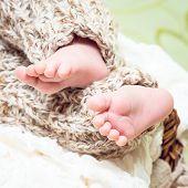 foto of fingers legs  - Little fingers - JPG