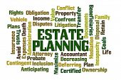 image of maxim  - Estate Planning word cloud on white background - JPG