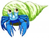 image of hermit  - Illustration of a close up hermit crab - JPG