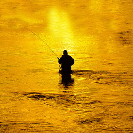 picture of fly rod  - Man fishing in river with fly rod and waders - JPG