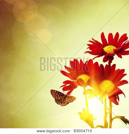 Three red flowers and butterfly under a bright warm sunny sky