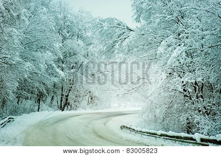 Winter Road  With Snow-covered Trees