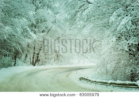 Winter Road  With Snow-covered Trees In Rusia