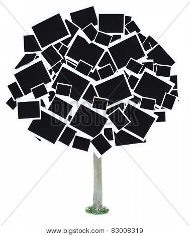 Big tree made of photo cards isolated on white
