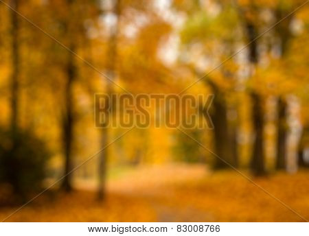 Defocused blurred autum background - valley in fall with yellow tree leaves