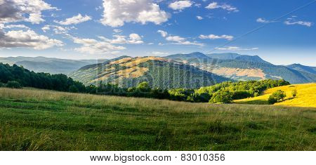 Meadow In High Mountains At Sunrise