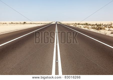 Desert Highway In Abu Dhabi
