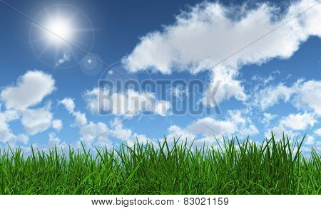 3D render of lush green grass with a sunny blue sky