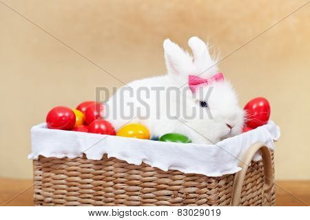 Closeup of cute easter bunny sitting in basket with colorful eggs-shallow depth of field